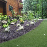 Photo Thumbnail #23: Backyard turf and landscape