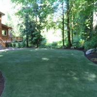 Photo Thumbnail #19: Back corner view of artificial turn in backyard