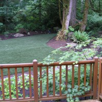Photo Thumbnail #3: Backyard toward right side after artificial...