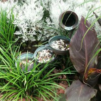 Photo Thumbnail #6: Aged copper fountain among Cannas, Dusty...