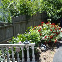 Photo Thumbnail #4: Flower bed by our drive