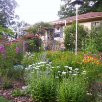 Photo Thumbnail #8: Septic tank,garden on a slope.