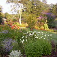 Photo Thumbnail #9: Septic garden is the entrance to back yard.