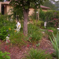 Photo Thumbnail #3: Memory garden. I have a angel for each family...