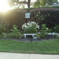 Photo Thumbnail #11: Center of my largest flower garden in backyard.