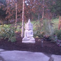 Photo Thumbnail #18: Buddha surrounded by hosta and astilbe.