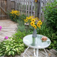Photo Thumbnail #20: Side entrance filling in nicely with perennials.