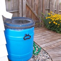 Photo Thumbnail #25: My husband made rain barrels and placed them...