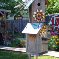 Photo Thumbnail #10: Wrens like the condos.