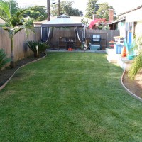 Photo Thumbnail #2: This was my backyard in summer of 2010 before I...