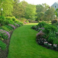 Photo Thumbnail #1: A view of the patio garden and the hill garden...