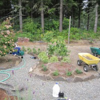 Photo Thumbnail #16: August 9, 2010.  Another planting day in the...