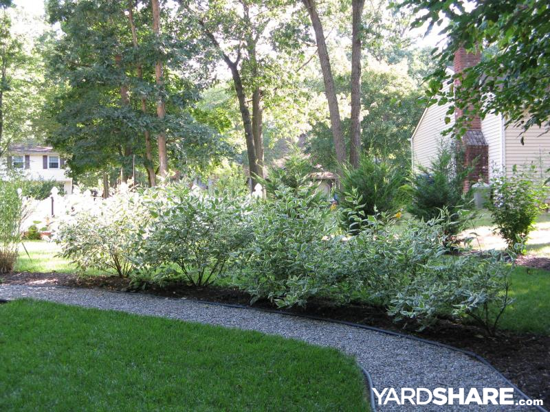 Landscaping ideas woodland path and shade garden for Woodland shade garden designs