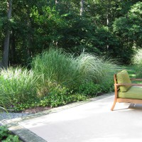 Photo Thumbnail #3: Borders of ornamental grasses along the patio