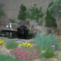 Photo Thumbnail #4: My 4 ft deep pond is small but deep due to...