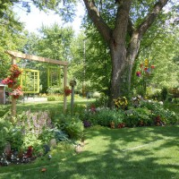 Photo Thumbnail #14: View of the side yard, early summer 2011. We...