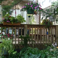 Photo Thumbnail #7: deck and shade garden