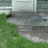 Photo Thumbnail #4: Back door with an excavated cement paved patio?...