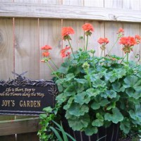 Photo Thumbnail #6: Garden sign that people seem to love in my...