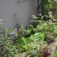 Photo Thumbnail #10: other side bed...cottage garden look.