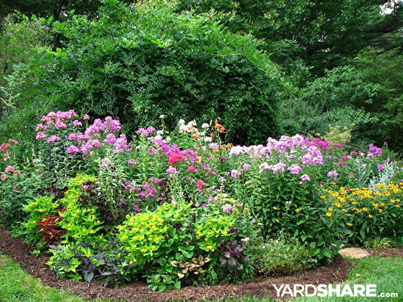 Landscaping Ideas Zone 9 : Landscaping ideas gt cottage garden yardshare
