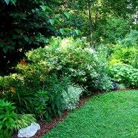 Photo Thumbnail #7: Left side of pathway at side garden