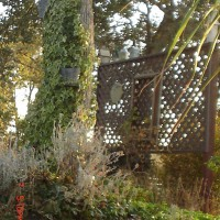 Photo Thumbnail #4: trellis by the road... has metal bird houses.....