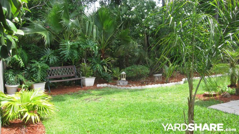 Backyard Garden Oasis : Landscaping Ideas > Courtyard Pool and Backyard Oasis  YardSharecom