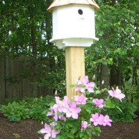 Photo Thumbnail #6: A closer look at the new birdhouse and clematis...
