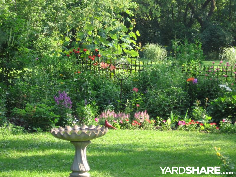 Patio Ideas For A Tight Budget: Landscaping Ideas > Backyard Flowers