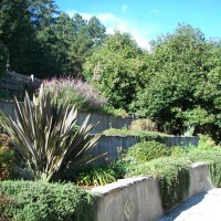 Photo Thumbnail #24: retaining walls along side parking lot with...