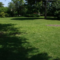 Photo Thumbnail #14: The garden has plenty of open space for...