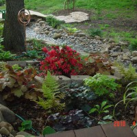 Photo Thumbnail #9: View of south side of shade garden and creek bed