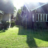 Photo Thumbnail #4: Side yard was just grass