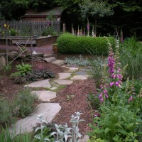 Photo Thumbnail #9: Path through the garden, early spring