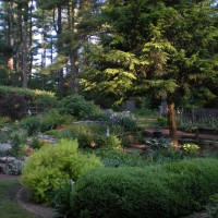 Photo Thumbnail #15: Backyard on an early spring evening