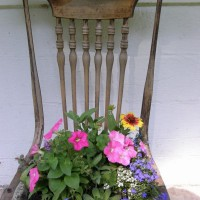 Photo Thumbnail #13: antique chair with an array of annuals &...