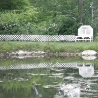 Photo Thumbnail #20: reflection from our pond that I have started to...