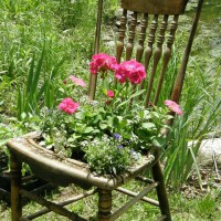 Photo Thumbnail #22: my old antique chair, see pic #13