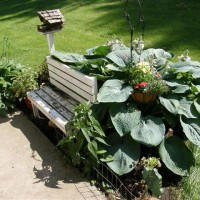 Photo Thumbnail #3: A small garden which hides our ugly well casing...