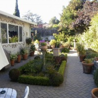Photo Thumbnail #6: 1/2 back yard Italian garden area, with formal...