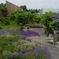 Huge half acre plus landscaping ideas for Half acre backyard landscaping ideas