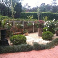 Photo Thumbnail #3: Court yard with gardenias, roses and mondo grass