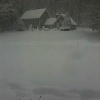 Photo Thumbnail #2: Two feet of snow! Jan 2011 snow storm.