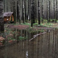 Photo Thumbnail #2: 1-23-2011 Heavy rains float the logs that...