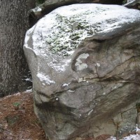 Photo Thumbnail #2: One of the huge rocks in the front yard