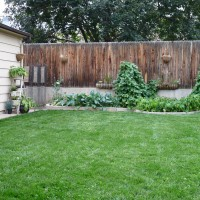 Photo Thumbnail #1: The left side of the garden...