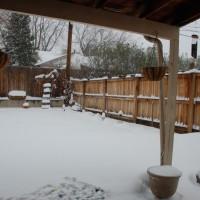 Photo Thumbnail #3: Winter - not so fun.
