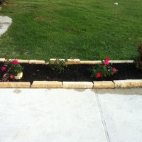 Photo Thumbnail #3: Rose bed lining the driveway. 3 Strawberry and...