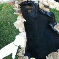 Photo Thumbnail #12: Decided on making the pond larger and putting...